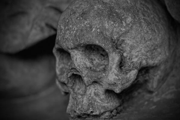 На Тернопільщині пенсіонерка знайшла людські рештки
