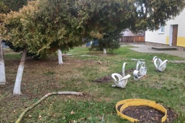 У селі неподалік Тернополя вандали поглумилися над шкільним подвір'ям (Фото)