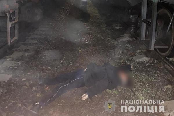 У Збаразькому районі поїзд збив жінку