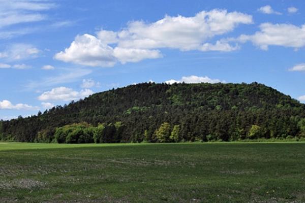 Божа Гора — унікальне місце на Кременеччині, де за переказами з'явилася Богородиця