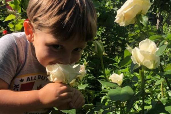 Вбитий в центрі Києва хлопчик виявився похресником Ірини Білик