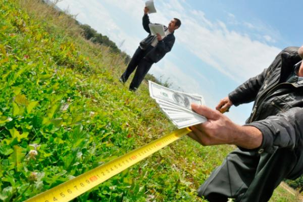 Прокуратура повернула навчальному закладу землю вартістю 14 млн грн на Тернопільщині