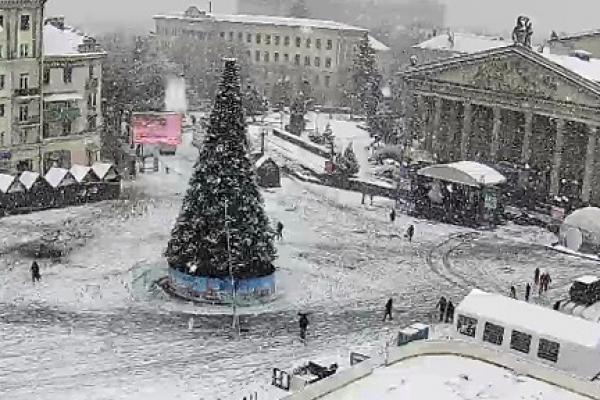 У Тернополі встановили головну новорічну ялинку