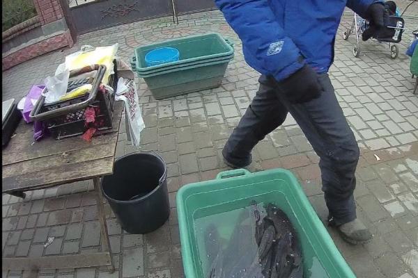 У Кременці рибалки замість заробітку отримають штраф