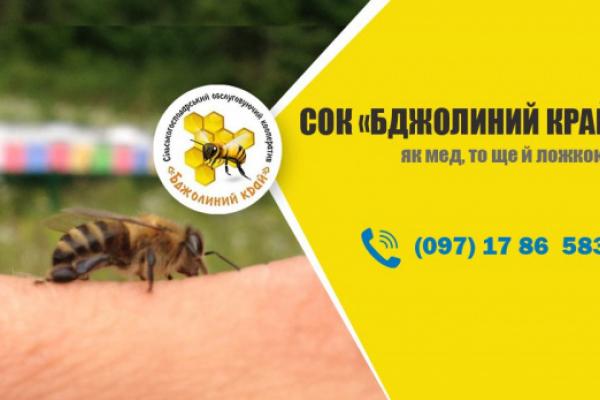 СОК «Бджолиний край» перший в Тернопільські області відкрито прозвітував перед громадою