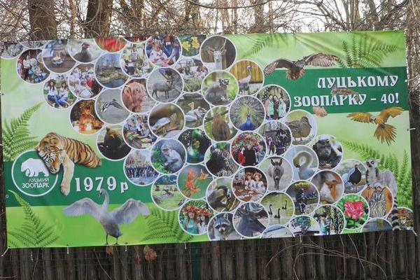 Незабаром канікули - поїхали у Луцький зоопарк