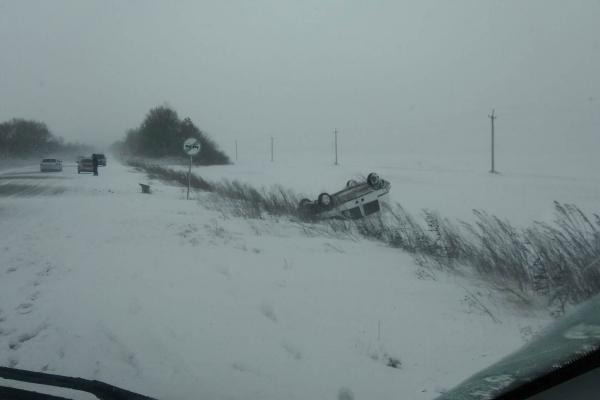 На Бучаччині на трасі перекинулося авто