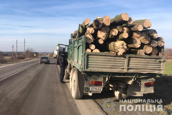 У Кременецькому районі поліцейські зупинили автомобіль з деревиною, вирубаною незаконно