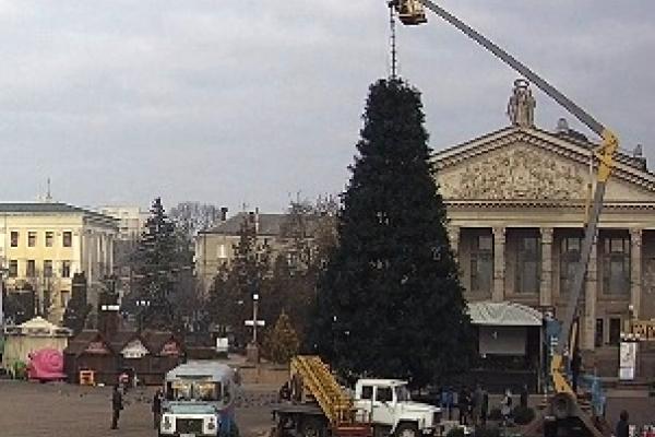 У Тернополі демонтували новорічну ялинку