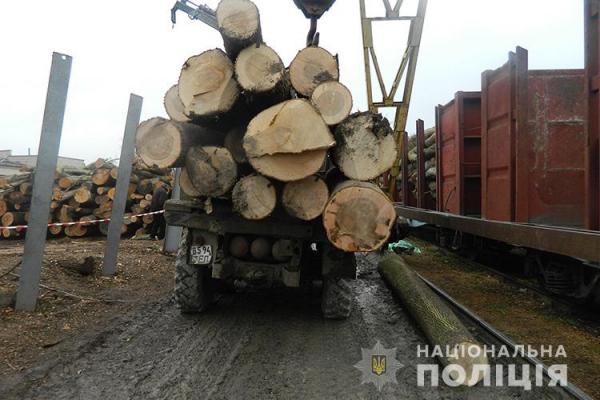 У Бережанах на території лісомисливського господарства загинув чоловік