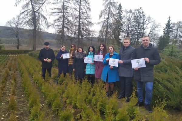 «1 000 000 дерев за 24 години»: на Тернопільщині долучаться до Всеукраїнського рекорду