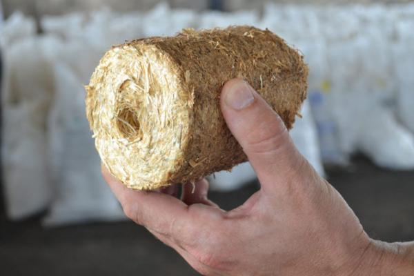 Фермер з Тернопільщини виготовляє еко-брикети з соломи, котрі можуть замінити паливо