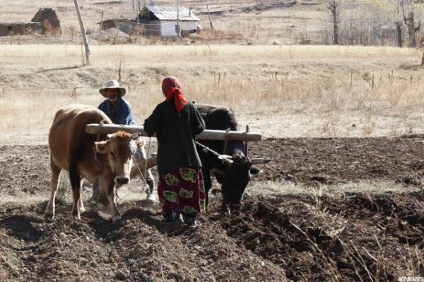 Україна йде зараз по гіршому сценарію «земельної реформи»