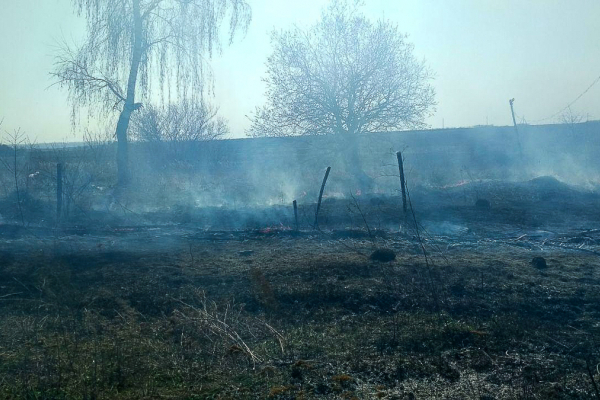 На Тернопільщині затримали палія сухої трави