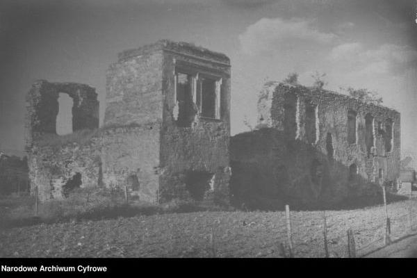 Руїни замку в Гологорах: ретро фото