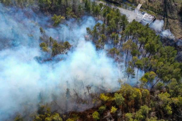 «Продовжують боротися за кожен клаптик землі»: на Тернопільщині два дні ліквідовували пожежу у лісі