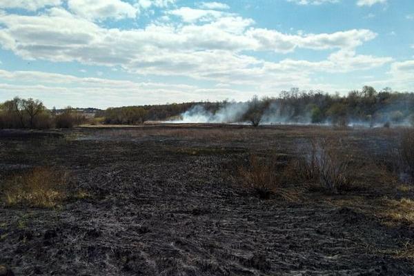 Нова пожежа на Теребовлянщині (Відео)
