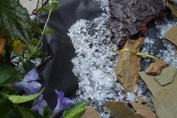 Яблунів на Тернопільщині засипало градом в останній день квітня, хоча прогноз погоди обіцяв «без опадів» (Фото)