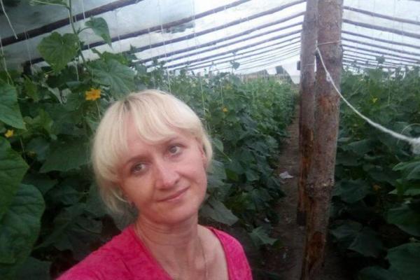 Фермери Тернопільщини змушені віддавати овочі за безцінь або викидати на смітник