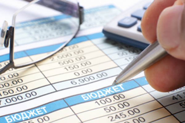 У Нараївській ОТГ одночасно виконується сім окремих бюджетів