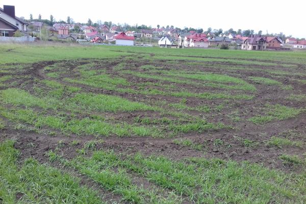 Земельне варварство біля Тернополя (Фото, відео)