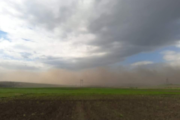 Пилова буря накрила невелике село на Тернопільщині (Фото, відео)