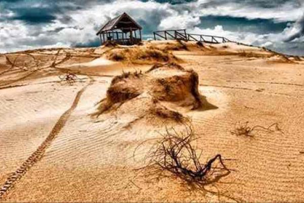 Чорнозем у пустелі: кому вигідна українська Сахара?