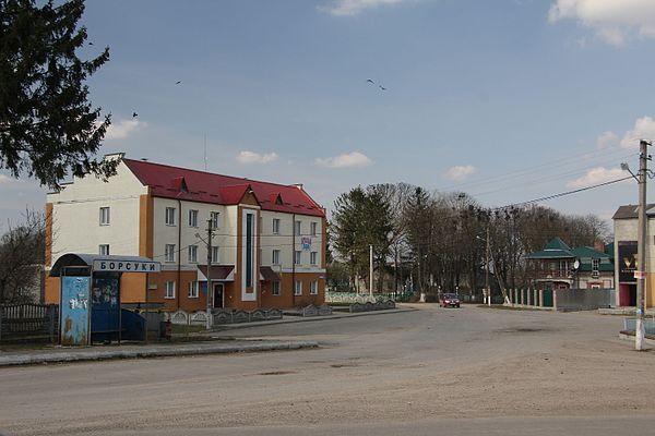 Як живуть і хто заробляє у «перспективній» Борсуківській ОТГ на Тернопільщині