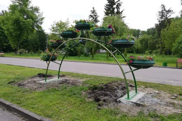Краса по-тернопільськи: у парку «Топільче» встановили металеву арку