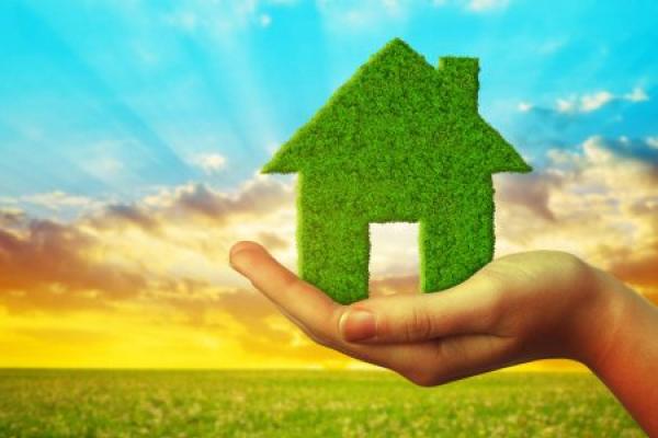 Дім в стилі ЕСО:  екологічно безпечне і економічно прибуткове домогосподарство