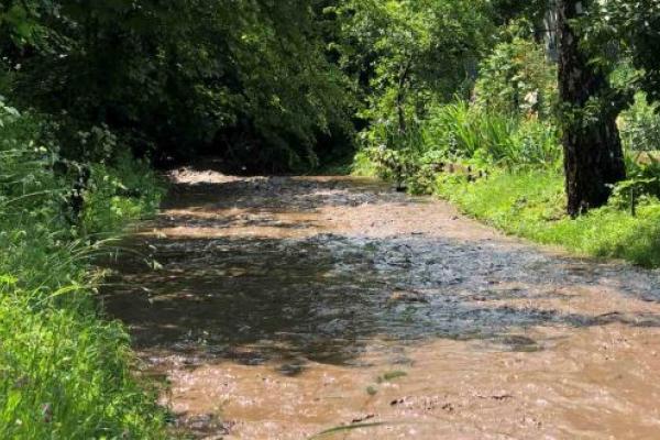 Через сильні зливи на Тернопільщині відновилася давно висохла річка