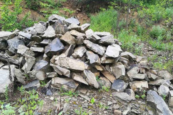 На Тернопільщини незаконно видобували копалини: сума збитків сягає понад мільйон гривень