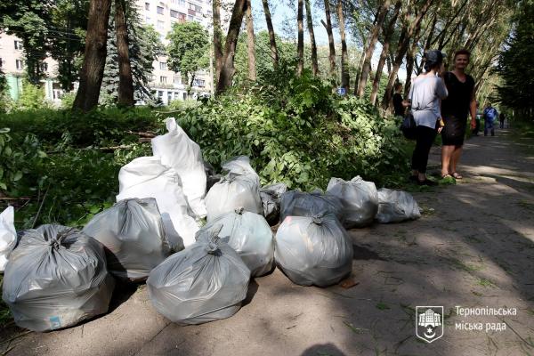 У Тернополі відбулася толока (Фото)