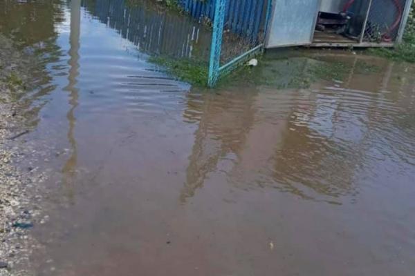 Через сильні дощі на Тернопільщині підтоплені подвір'я