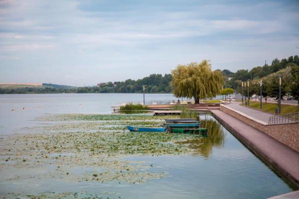 Вперше за останні 40 років проводиться системна роботу по очистці тернопільського озера