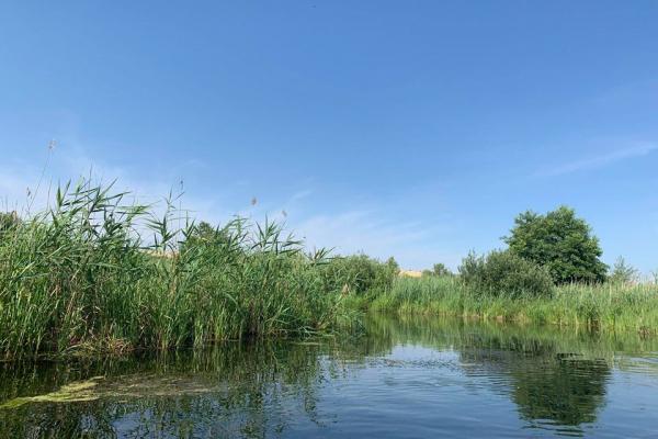 «Допустив забруднення річки Гнізна»: на Тернопільщині судитимуть головного інженера підприємства