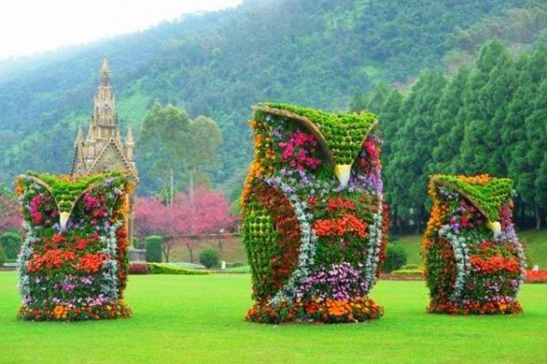 «Квіткові композиції»: у Тернополі  оголосили конкурс