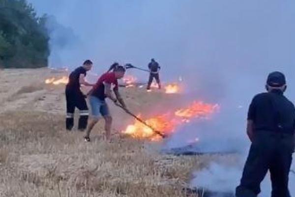 «Молодці й герої»: тернопільський спортсмен і підприємець Юрій Сенів допомагав рятувальникам врятувати поле від вогню (Відео)