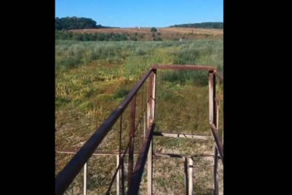 Біля Тернополя місце, де був великий став, перетворилося на закинуте поле