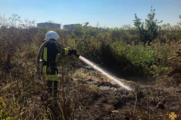 Спалюванню сухої трави у Тернополі могло спровокувати масштабну пожежу