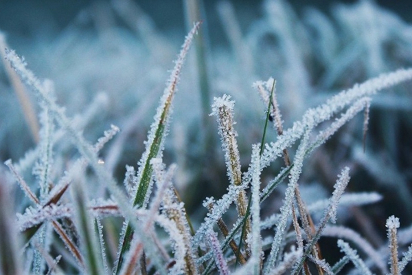 На Тернопільщині попереджають про різке похолодання