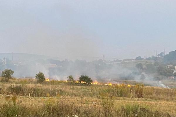 У Бережанах масово спалюють суху траву