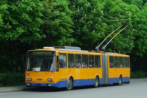 Тернопіль: учні та студенти можуть їздити безкоштовно у громадському транспорті