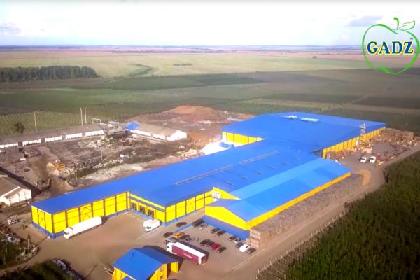 Фермерське господарство «ГАДЗ» відкрило ще одне потужне фруктосховище (Відео)