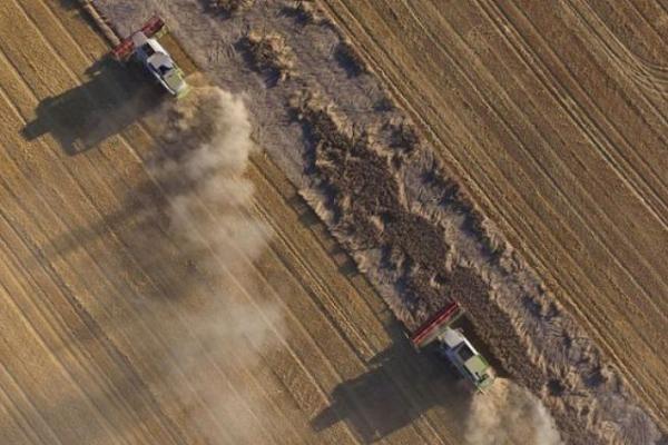 Після місцевих виборів ОТГ отримають більше 2 мільйонів гектарів сільгоспземель