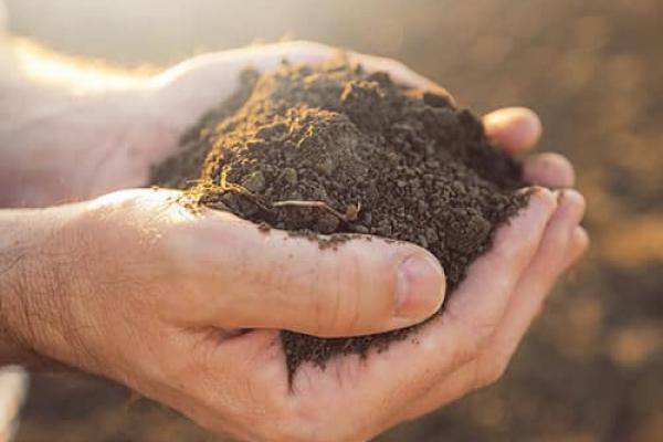 Жителям Тернопільщини — про зміни у земельних відносинах: топ-8 міфів