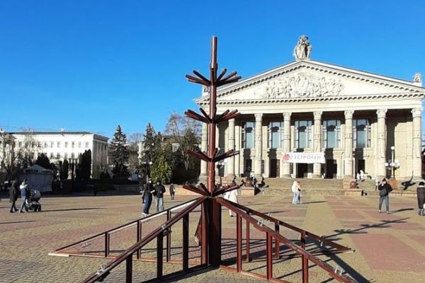 У Тернополя розпочали встановлювати головну ялинку міста