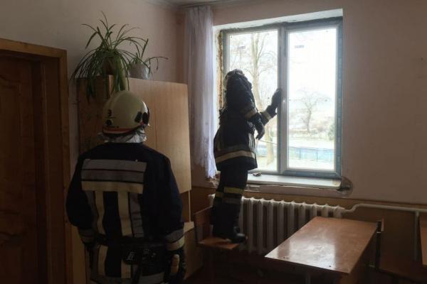 В одній зі шкіл Тернопільщини виявили летючих мишей