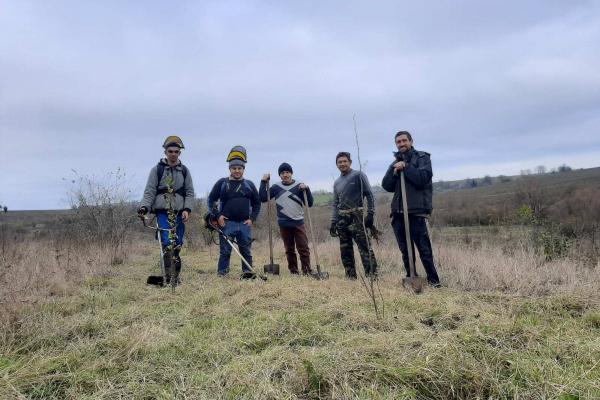 Компанія «Контінентал» продовжує на Тернопільщині реалізацію екологічної акції «Марафон лип»