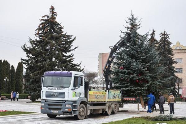 Як у Чорткові готуються до Новорічно-Різдвяних Свят?